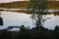Campers are swimming in the lake in the evening sun with the beautiful view of the large lake and the surrounding forest